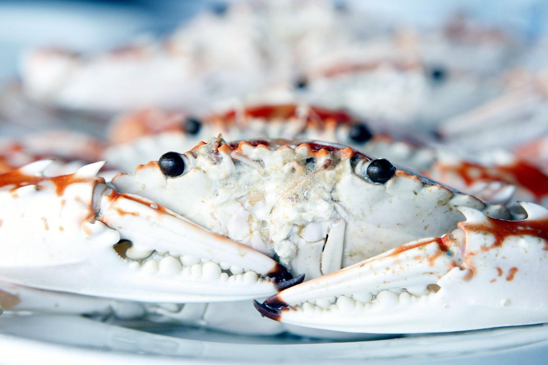 Languste * Crayfish